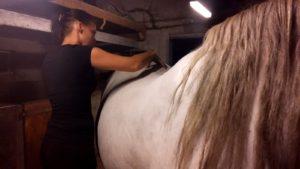 Silla massage Equis Care